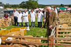 10 August The Danby Show