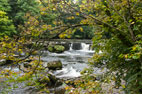 27 September 2017 Aysgarth Falls, Redmire & Castle Bolton